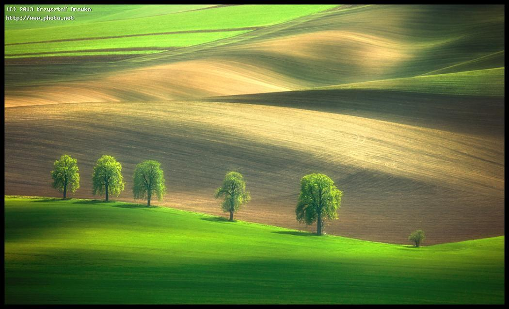 Shadows on the fields...