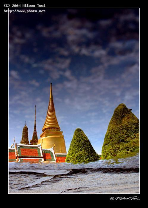 a puddle of palace bangkok seeking critique tsoi wilson