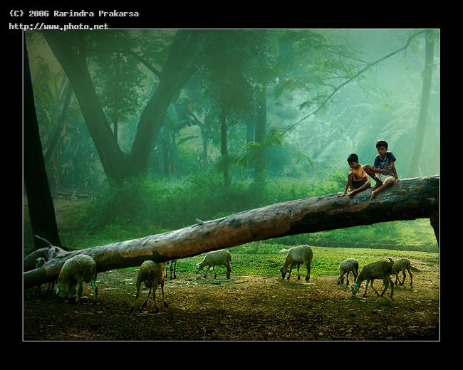 an ordinary morning kid indonesia rural java happy children farmer vll prakarsa rarindra