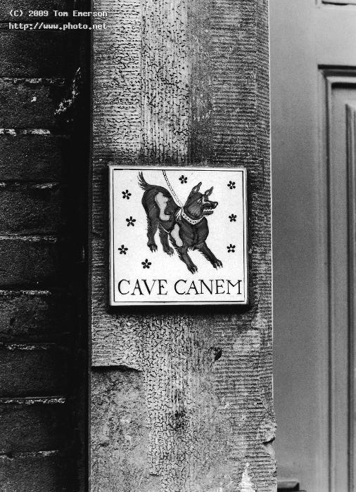 cave canem black and white film emerson tom