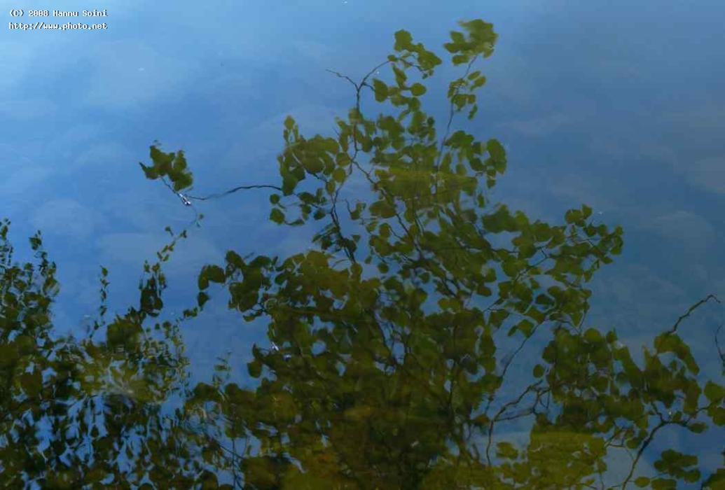 clear water reflections finland seeking critique soini hannu