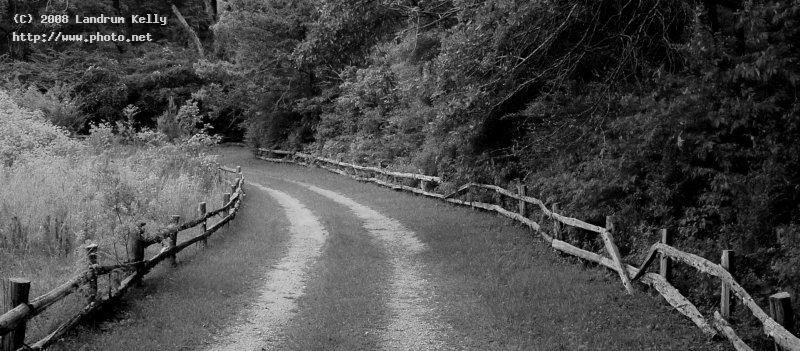 country lane bw olympus e n south mccormick barely kelly landrum