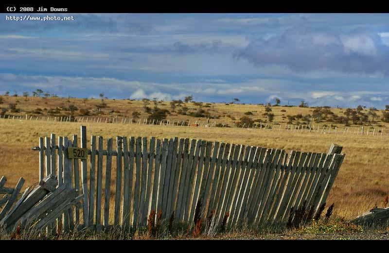 dont fence me in pto natales sony alpha dslr a zoo downs jim