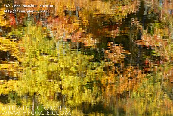 fall foliage reflections vermont forcier heather