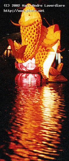 fish lanterns i had no zoom so this picture is a c laverdiere marc andre