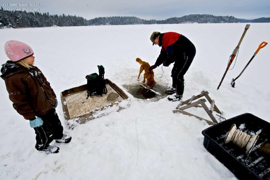 fishermans curious helpers finland seeking critiqu soini hannu