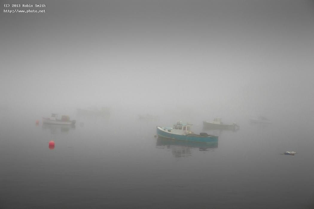 foggy moorings smith robin