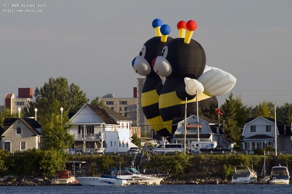 giant alien bees invade the town of gatineau quebe scott michael