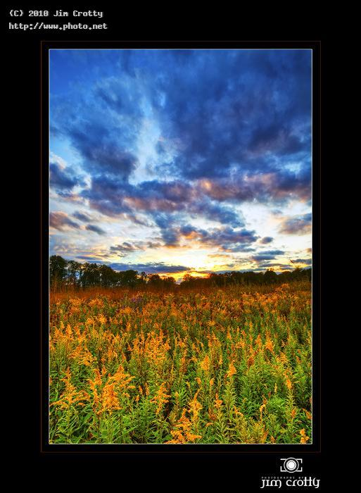 goldenrod and october sky jim photography ohio photographer autumn fall gold crotty