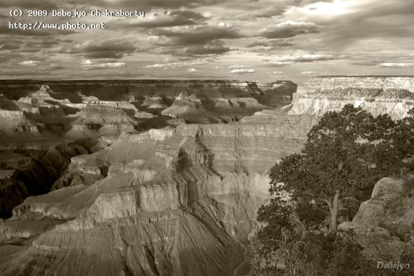 grand canyon view from pima point seeking critique chakraborty debejyo