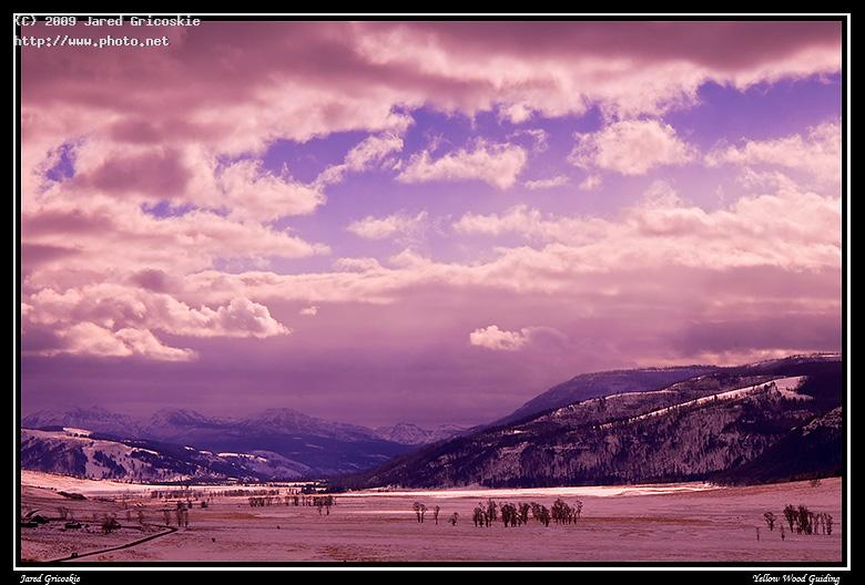 lamar valley blue and gold filter yellowstone national gricoskie jared