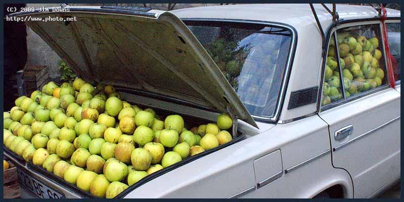 meals on wheels the apple department baku sony f alpha a downs jim