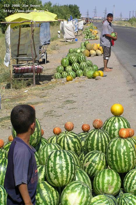 melon matters naxcivan melons azerbaijan seeking critique downs jim