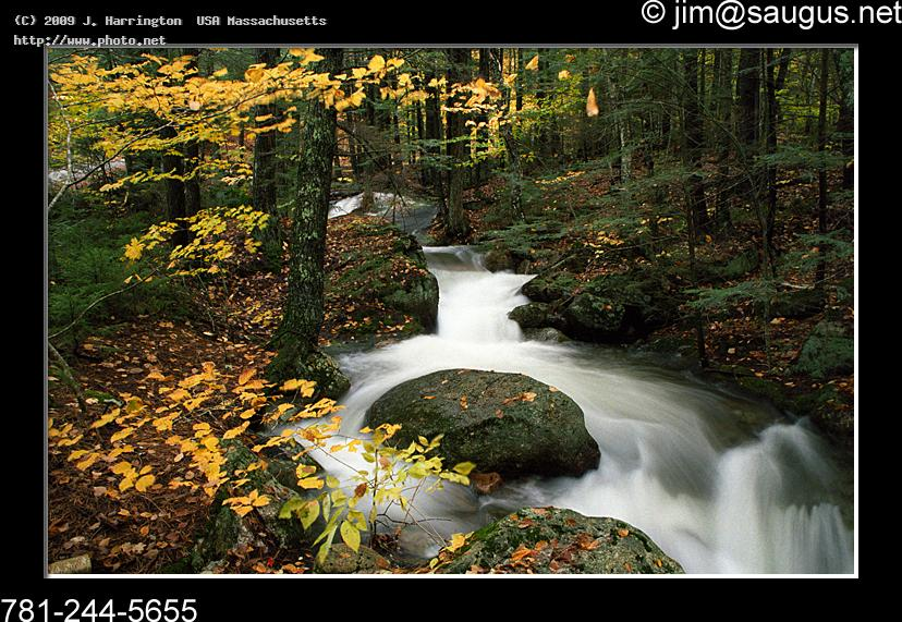 new hampshire waterfall photo cascade river foliag national forest mo harrington usa massachusetts j