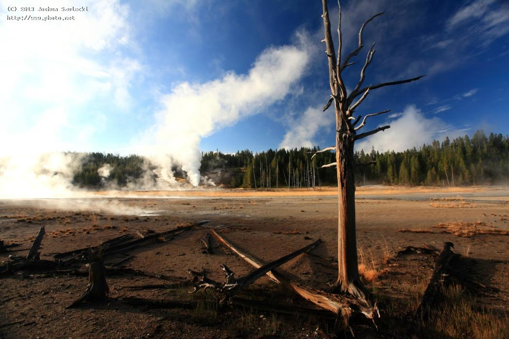 norris geyser basin area yellowstone national pa szulecki joshua