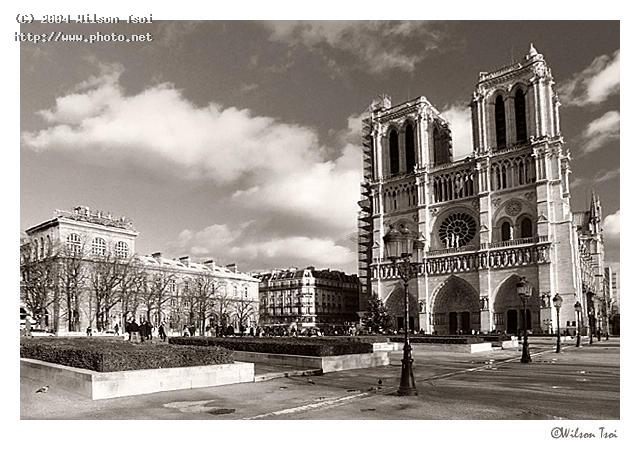 notre dame cathedral tsoi wilson