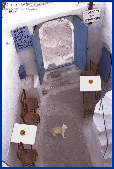 old cafe in santorini greece dimitris fira aegean isl varos