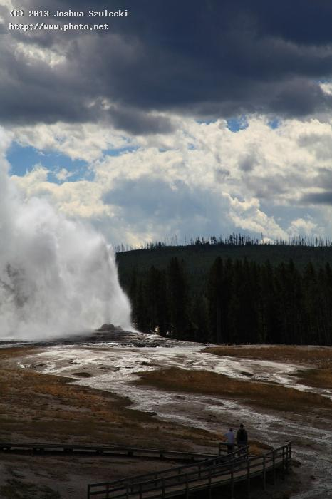 old faithful geyser erupting upper basin szulecki joshua