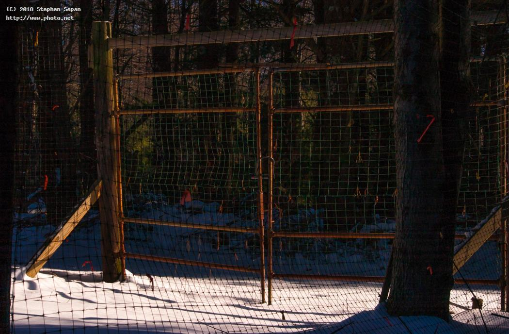 Old Garden Gate Dh Clarion Nikon Pennsylvania Fence Posts Fo In Snow Late  Afternoon Light Sepan