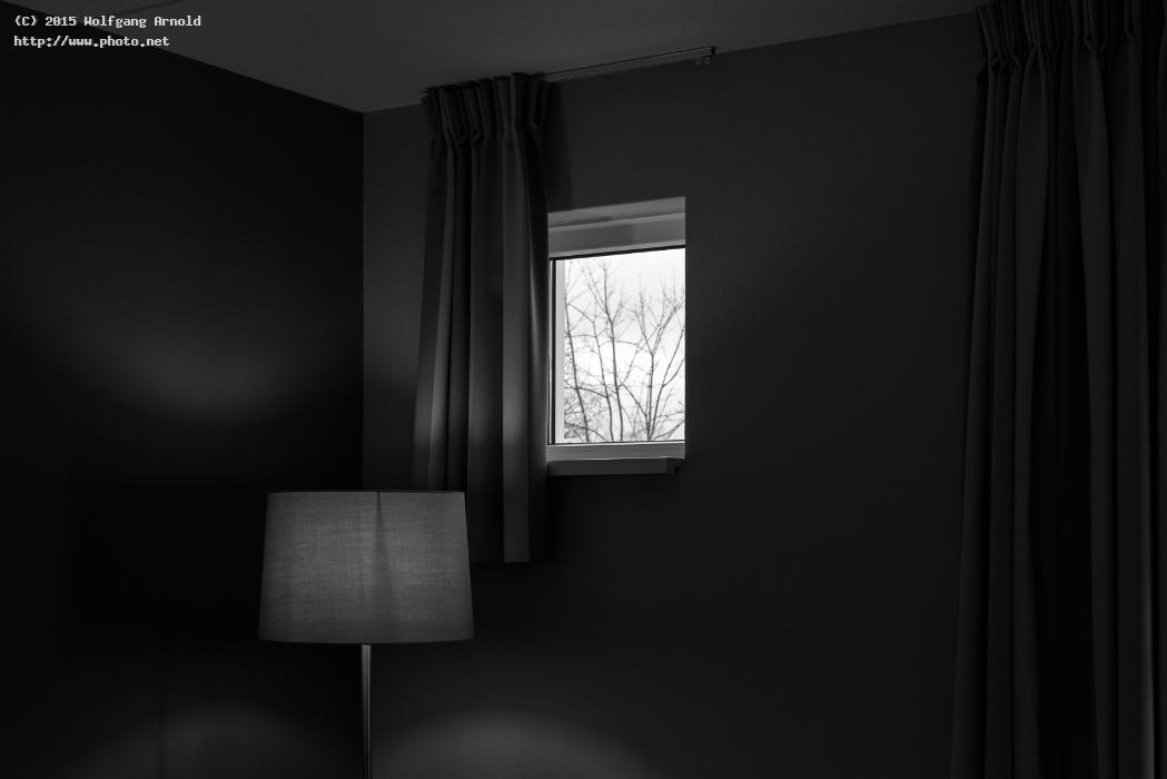 outsideinside i white black silhouette tree lamp window seeking cr arnold wolfgang