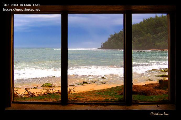 room with a view tsoi wilson