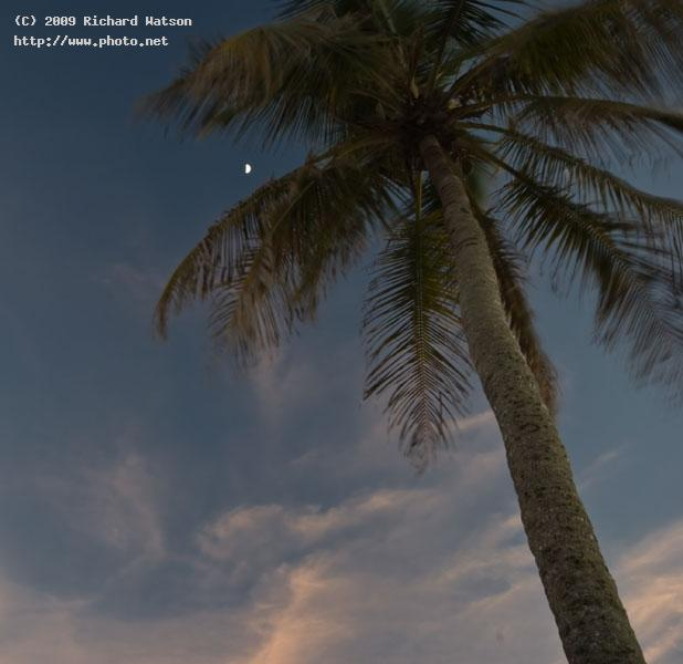 sanibel moonrise palm beach west watson richard