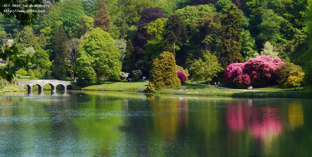 summer at stourhead national trust lake and bridge mcnulty sarah