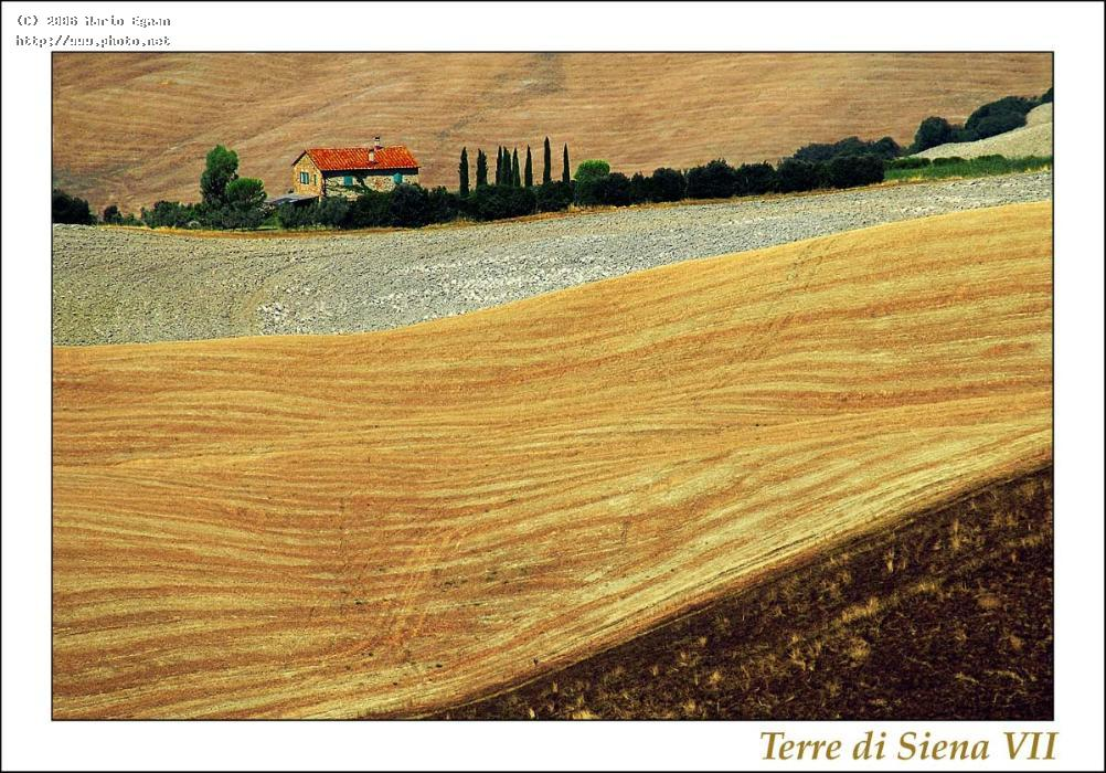 terre di siena seeking critique egman mario
