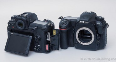Nikon D500 and 16-80mm DX Lens Review