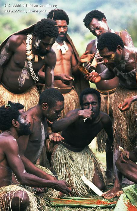too many cooks spoil the broth native cooking papua seeking critique nordborg nicklas