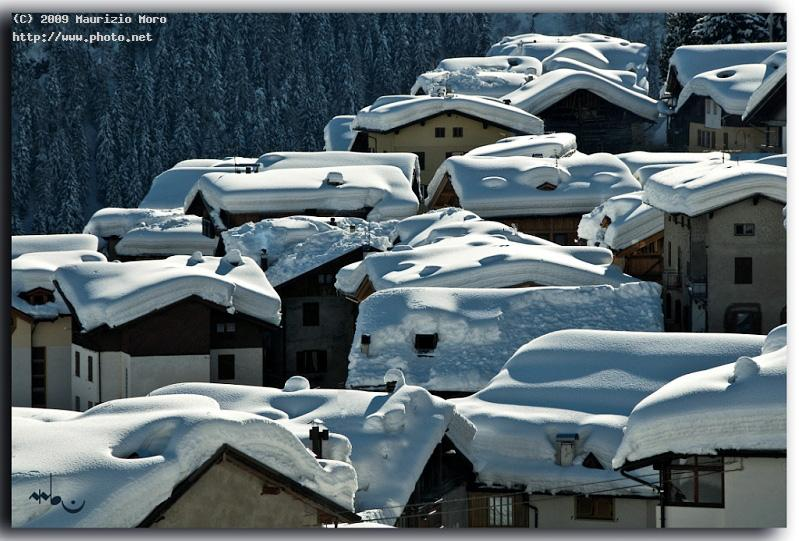 too much snow this year pejo winter seeking critique moro maurizio