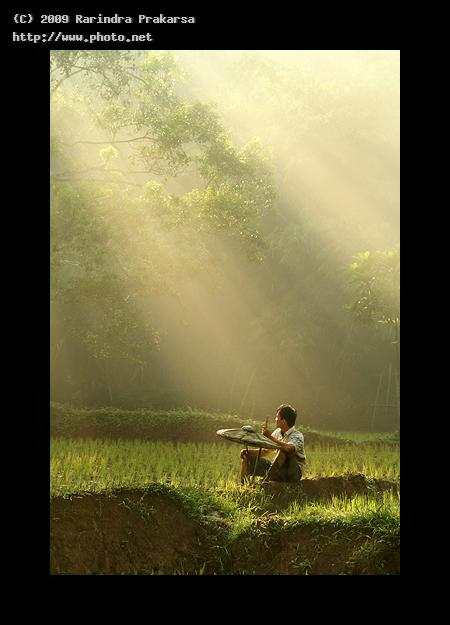 untitled color java ray light farmer colour vegetables mark prakarsa rarindra