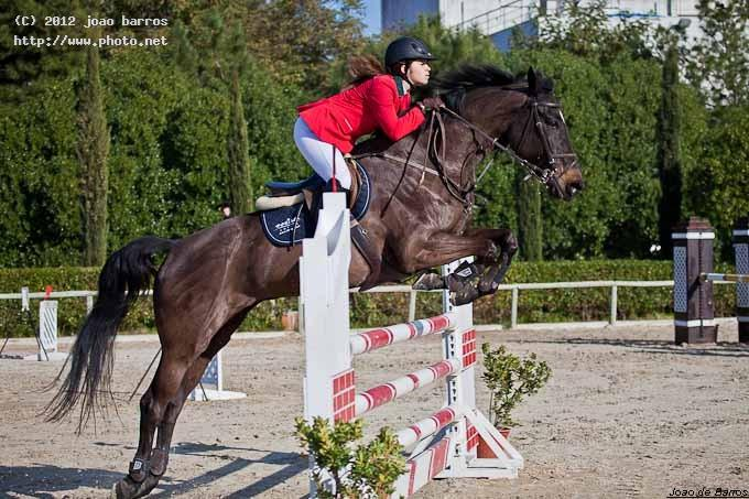 untitled show jumping equitation rider equestrian horse barros joao