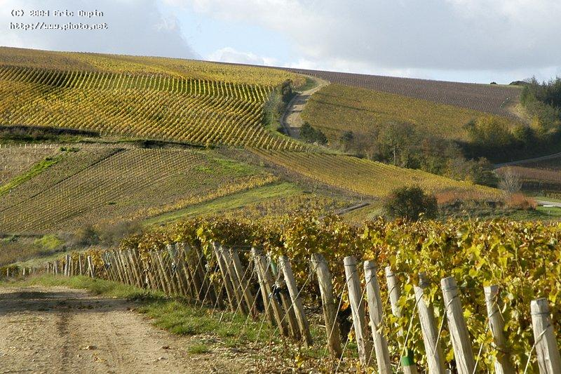 walking in sancerrois dupin eric