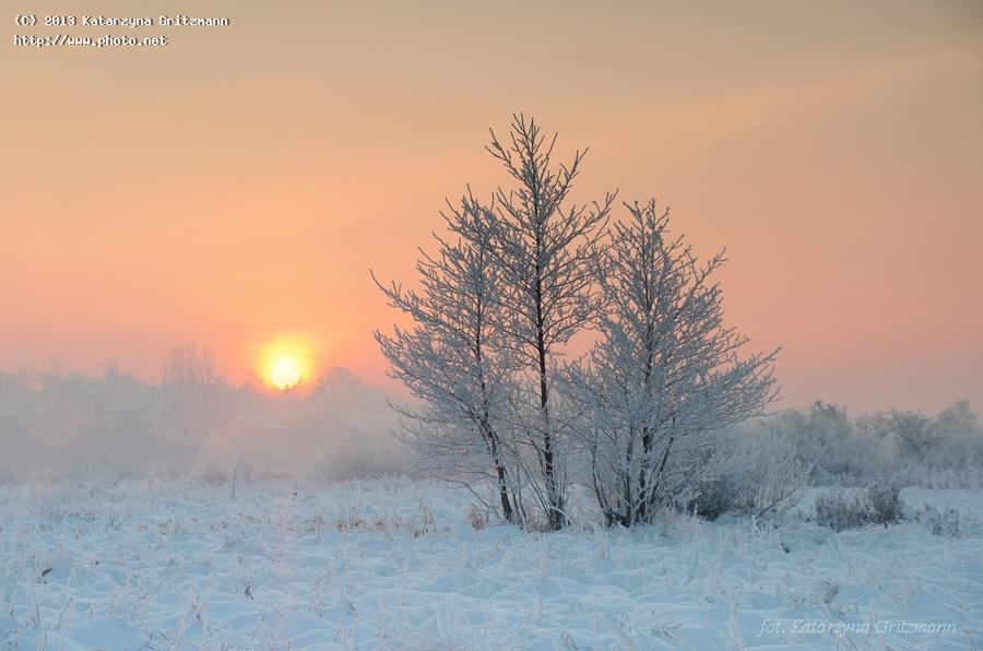 winter sunrise seeking critique gritzmann katarzyna